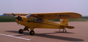 pipercub-yellow