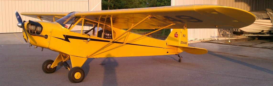 pipercub-yellow-sunlit